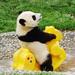 Thumb panda