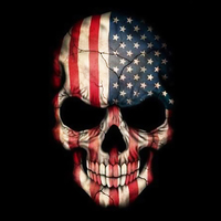 Main american skull wallpaper 10625276