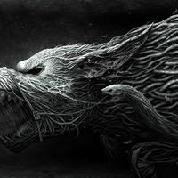 Main dark wolf 209289