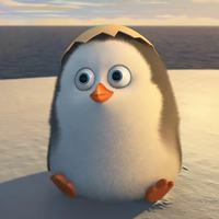 Main 16 penguins of madagascar