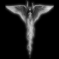 Main angel2