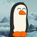 Thumb avatar 800