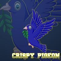 Main pigeon 2  1