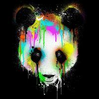 Main panda