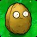 Thumb giant wallnut