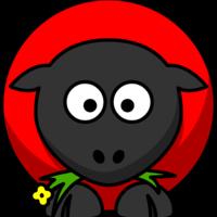 Main red sheep 1080