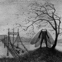 Main mb mothman