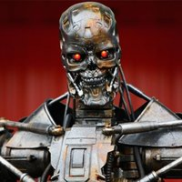 Main  terminator  rights poised to head