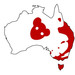Thumb drop bear big