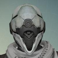 Main destiny hunter headshot avatar