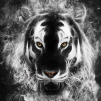 Main tiger art wallpaper 10640507
