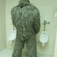 Main bigfoot urinal