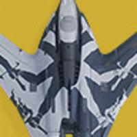 Main symmetry flight